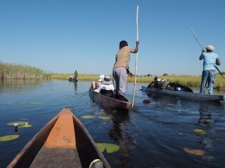 """A """"mokoro"""" (canoe) ride through the delta."""